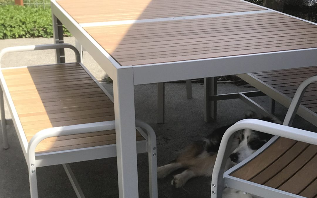 7 Steps to Make a Picnic Table Dog House – An Expert IKEA Hack
